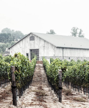 Spear Vineyard and Winery